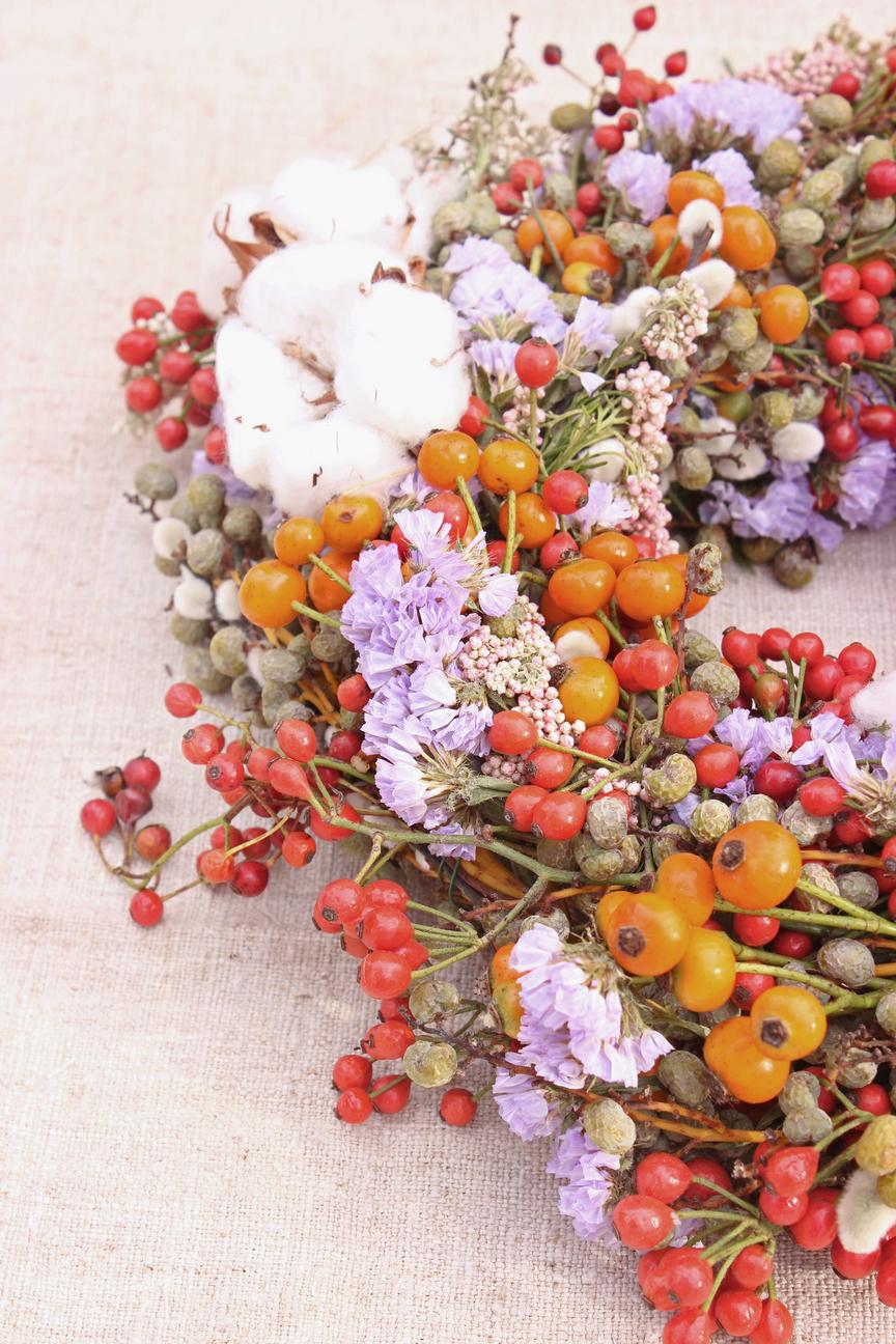 Wintergarden (One)